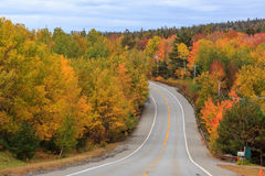 Beautiful fall colors of Acadia National Park. In Maine USA stock photos