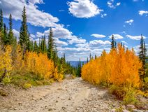 Beautiful Fall Colors At Lake Lomond. Beautiful fall colors from the changing aspen leaves at Lake Lomond. Idaho Springs, Colorado stock photography