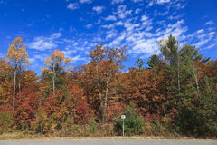 Beautiful fall colors scenery Stock Images