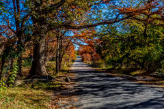 Beautiful Fall Foliage Framing a Lonely Country Road on the Guadelupe River, Texas. Royalty Free Stock Images