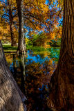 Beautiful Fall Foliage on the Guadalupe River, Texas. Stock Photo