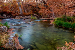 Beautiful Fall Foliage on the Guadalupe River, Texas. Stock Images