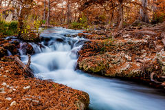 Beautiful Fall Foliage on the Guadalupe River, Texas. Royalty Free Stock Photos