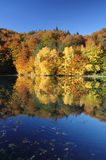 Beautiful fall forest reflected in a calm lake Stock Photo
