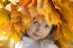 Beautiful fall girl Royalty Free Stock Images