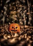 Beautiful fall lake Stock Images