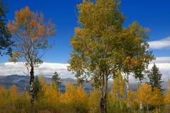 Beautiful fall landscape Stock Images