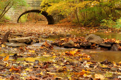 Fall Scene. Beautiful Fall scene with a calm stream and colorful leaves and a stone bridge in the background Stock Images