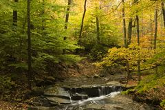 Beautiful fall scene with steam and fall foliage. A beautiful fall setting with stream, waterfall and colorful trees Royalty Free Stock Photography