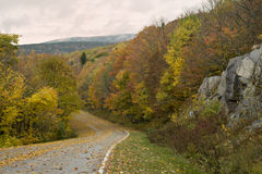 Beautiful Fall Virginia Road Stock Photos
