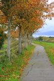 Beautiful Fall walk in peaceful setting Stock Images