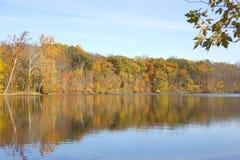 Beautiful fall woods reflects across lake Stock Image