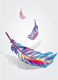 Beautiful falling feathers Stock Image