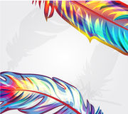 Beautiful falling feathers Stock Images