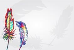 Beautiful falling feathers vector illustration