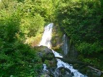 Beautiful falls on the mountain river in Abkhazia. Stock Photos