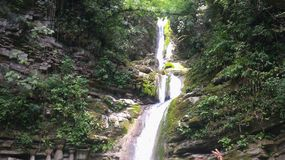 Beautiful Falls in Xilitla royalty free stock images