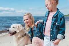 beautiful family with golden retriever dog royalty free stock image