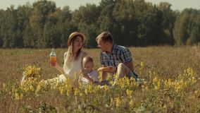 Beautiful family having picnic in green field stock video