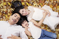 Beautiful family lying on autumn leaves Royalty Free Stock Images