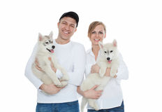 Beautiful family, a man and woman holding hands on the husky puppies, isolation Stock Photos