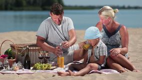 Beautiful family picnicking on the beach stock video