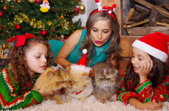 Beautiful family wearing a christmas clothes, hugging her cats, the curly girl with a red tie in her hair while the Royalty Free Stock Photo