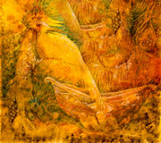 Beautiful fantasy drawing of a fairy golden birds and a boat Stock Photos