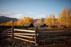 Beautiful farm Royalty Free Stock Photography