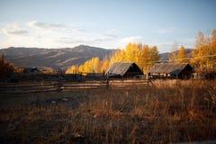 Beautiful farm Stock Photos
