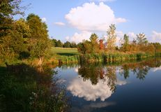 Beautiful Farm Pond Scene. Dramatic Farm Pond Scene with Cloud Reflection royalty free stock image