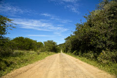 A beautiful farm road Royalty Free Stock Photos
