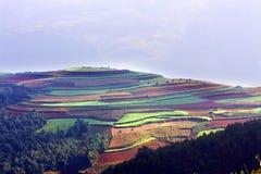 Beautiful farmland Stock Photography