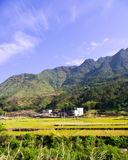 Beautiful farmland of southwest china Royalty Free Stock Images