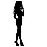 Beautiful fashion girl silhouette on a white background Royalty Free Stock Images