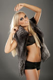 Beautiful fashion model  in fur Stock Images