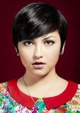 Beautiful fashion portrait Stock Images