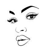 Beautiful fashion woman portrait for make up on background. Vector illustration eps 10 Stock Photography