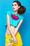 Beautiful fashionable woman an unusual hairstyle Stock Image