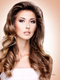 Beautiful fasion model with gorgeous long brown hair Stock Images