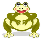 The Beautiful Fat Frog Royalty Free Stock Images