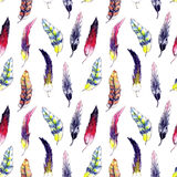 Beautiful feathers seamless background Royalty Free Stock Photo