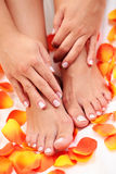 Beautiful feet Royalty Free Stock Images