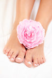 Beautiful feet Stock Images
