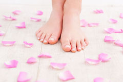 Beautiful feet. Royalty Free Stock Photography