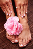 Beautiful feet and hands Royalty Free Stock Photo