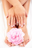 Beautiful feet and hands Royalty Free Stock Photography