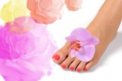 Beautiful feet leg with perfect spa pedicure Stock Photo