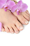 Beautiful feet with perfect french spa pedicure Stock Photography
