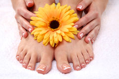 Beautiful feet with perfect spa french nail Stock Images